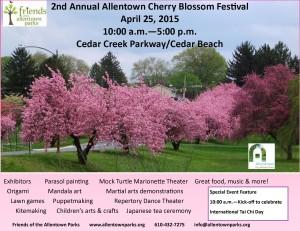 cb-festival-flyer